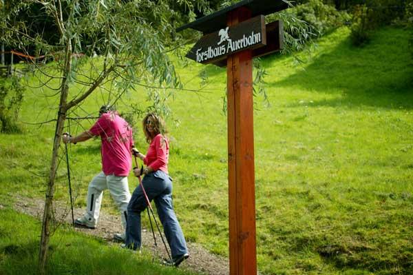 Wellness im schwarzwald fur singles Single Wellnessurlaub & Wellnesshotel Wochenende für ...